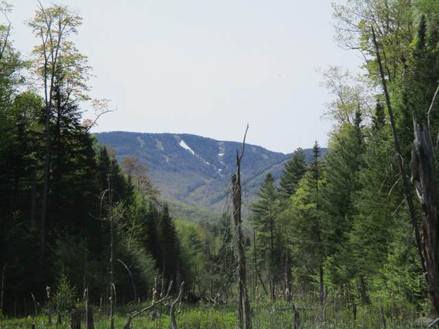 Oven Mountain Rd, North Creek, NY 12853 (MLS #202018363) :: 518Realty.com Inc