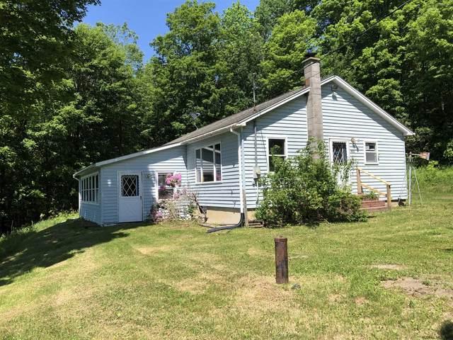 422 Goose Island Rd, Argyle, NY 12809 (MLS #202019274) :: 518Realty.com Inc