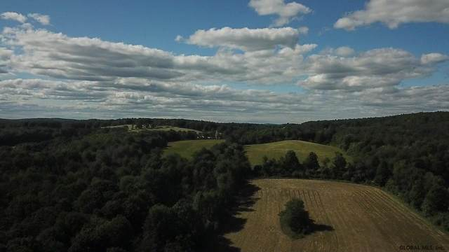 County Route 32, Chatham, NY 12115 (MLS #202020140) :: 518Realty.com Inc
