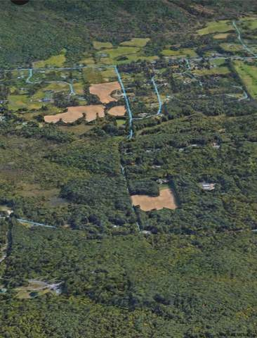 Lot 2 Pickle Hill Rd, Queensbury, NY 12804 (MLS #202021816) :: 518Realty.com Inc