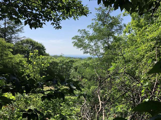 1932 State Highway 29A, Gloversville, NY 12078 (MLS #202024013) :: 518Realty.com Inc