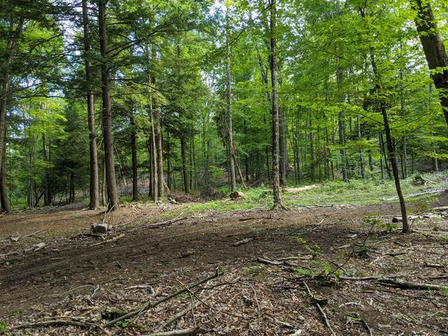 31.2-1-6.1 State Highway 30, Northville, NY 12134 (MLS #202024400) :: 518Realty.com Inc