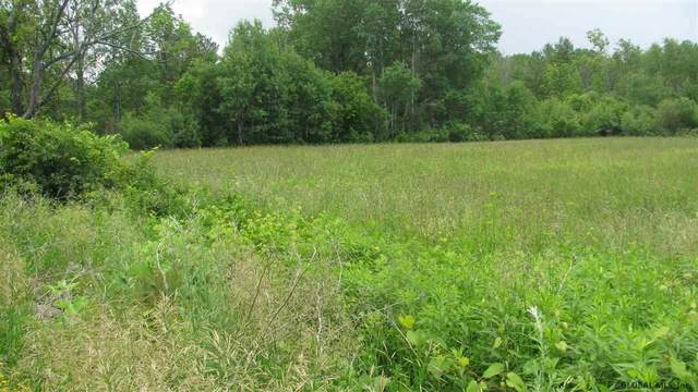 State Highway 29, Johnstown, NY 12095 (MLS #202026334) :: 518Realty.com Inc