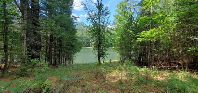 00 Clearwater Dr, Brant Lake, NY 12815 (MLS #202027431) :: 518Realty.com Inc