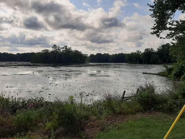 5-8 Lakeside La, Millerton, NY 12567 (MLS #202027981) :: 518Realty.com Inc