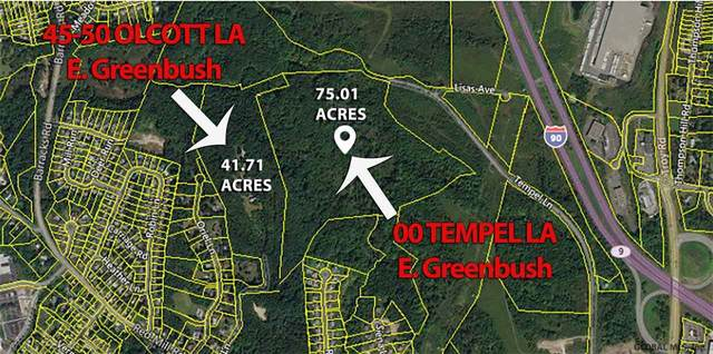 00 Tempel La, East Greenbush, NY 12144 (MLS #202028034) :: 518Realty.com Inc