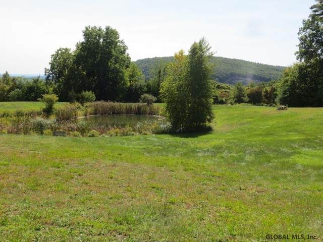 10 Mountain View Dr, Coxsackie, NY 12051 (MLS #202029344) :: 518Realty.com Inc