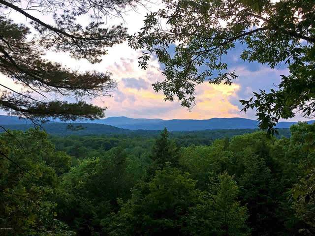 Lot 2 New York State Route 9L, Fort Ann, NY 12827 (MLS #202029393) :: 518Realty.com Inc