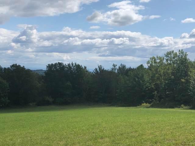 00 Bulson Rd, Cropseyville, NY 12180 (MLS #202030027) :: Carrow Real Estate Services