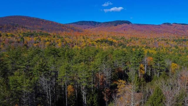 84 Mountain Path, North Creek, NY 12853 (MLS #202031706) :: 518Realty.com Inc