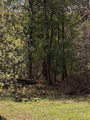 1 Buckbee Way, Troy, NY 12180 (MLS #202032125) :: 518Realty.com Inc