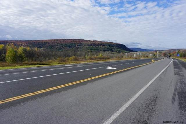 Lot 3 State Route 7, Schoharie, NY 12157 (MLS #202032683) :: 518Realty.com Inc