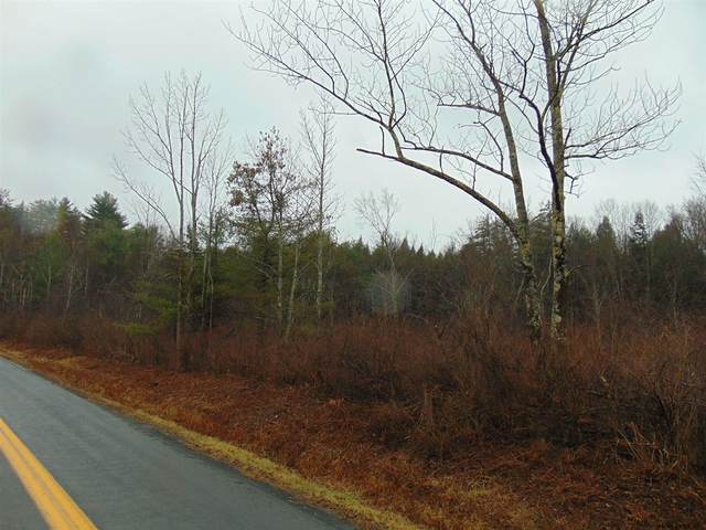 0-lot 2 Shun Pike Rd, Esperance, NY 12066 (MLS #202033443) :: The Shannon McCarthy Team | Keller Williams Capital District