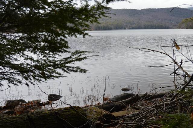 South Trout Lake Rd, Diamond Point, NY 12845 (MLS #202033606) :: Carrow Real Estate Services