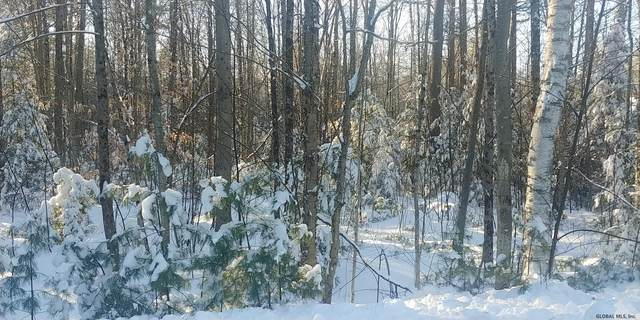 Lot 6 Pinewoods Rd, Chestertown, NY 12817 (MLS #202034645) :: 518Realty.com Inc