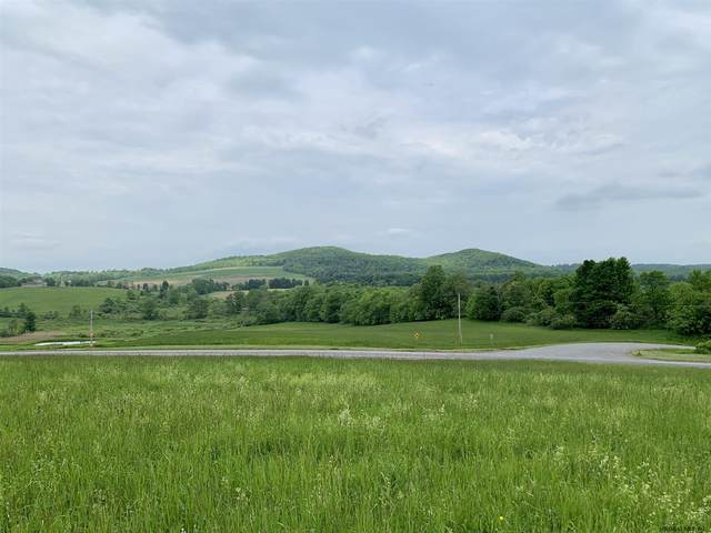 Lot 1 State Rt 145, Sharon Springs, NY 13459 (MLS #202034759) :: Carrow Real Estate Services
