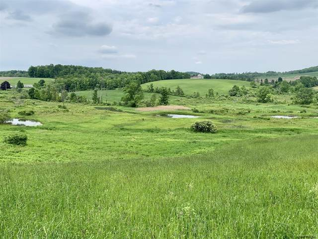 Lot 5 State Rt 145, Sharon Springs, NY 13459 (MLS #202034760) :: Carrow Real Estate Services