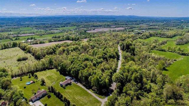 Lot #10 Gronczniak Rd, Stillwater, NY 12170 (MLS #202110332) :: The Shannon McCarthy Team | Keller Williams Capital District