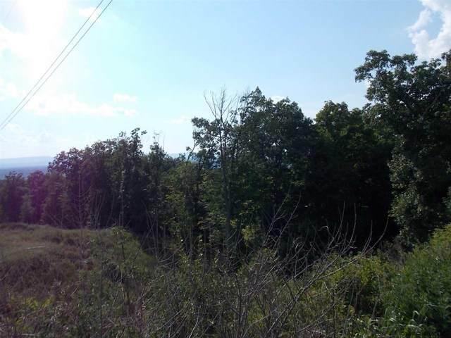 0 Ridge Rd, Rensselaer, NY 12144 (MLS #202111358) :: 518Realty.com Inc