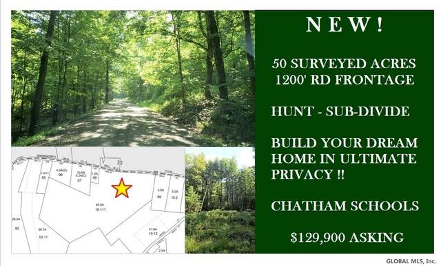Wadsworth Hill Rd, New Lebanon, NY 12125 (MLS #202112652) :: The Shannon McCarthy Team | Keller Williams Capital District