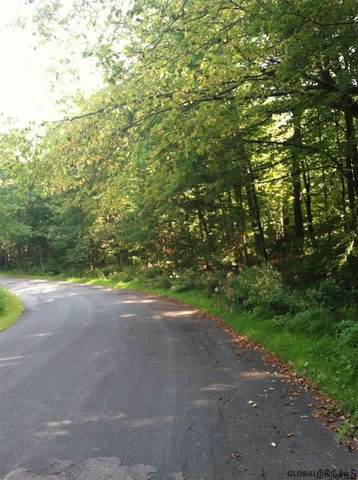 0000 Lords Hill Rd, Nassau, NY 12123 (MLS #202114637) :: The Shannon McCarthy Team | Keller Williams Capital District