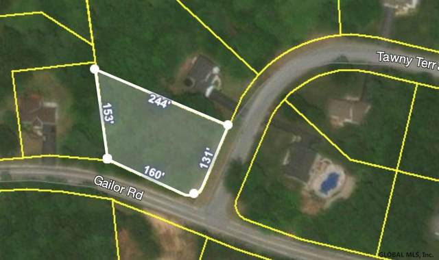 16 Tawny Terr, Gansevoort, NY 12831 (MLS #202114925) :: Carrow Real Estate Services