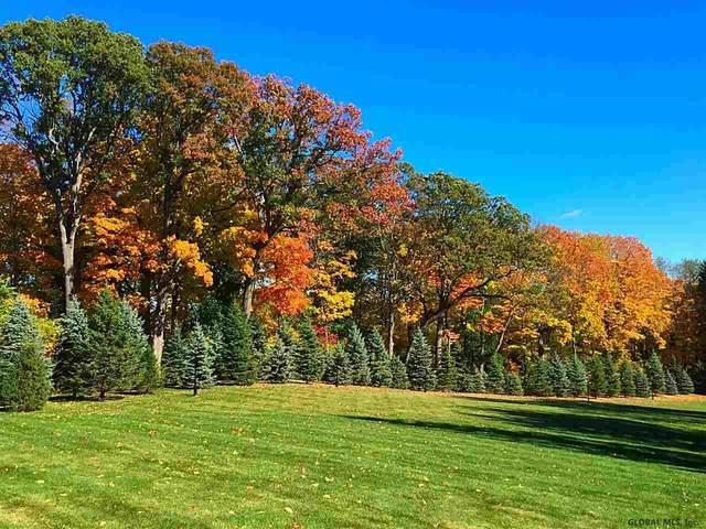 112a Woods La, Albany, NY 12204 (MLS #202114995) :: 518Realty.com Inc