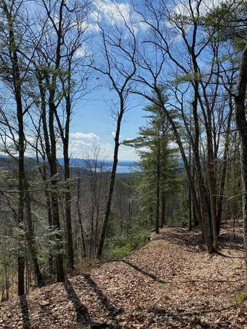01 Coolidge Hill Rd, Bolton Landing, NY 12814 (MLS #202115532) :: 518Realty.com Inc