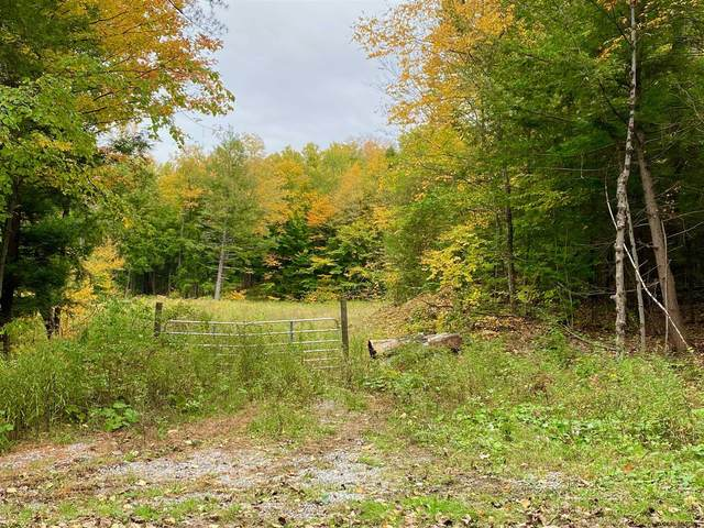 L77 King Rd, Middle Grove, NY 12850 (MLS #202115700) :: Carrow Real Estate Services
