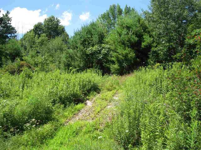 369 County Route 7, Schodack, NY 12123 (MLS #202116619) :: 518Realty.com Inc