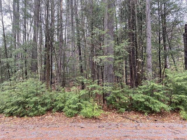 0 Loon Lake Heights Rd, Chestertown, NY 12817 (MLS #202116759) :: 518Realty.com Inc