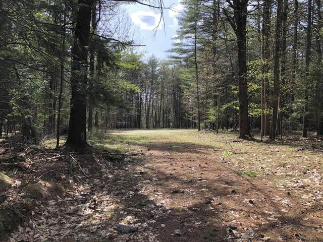7305 Fish House Rd, Galway, NY 12704 (MLS #202117904) :: 518Realty.com Inc