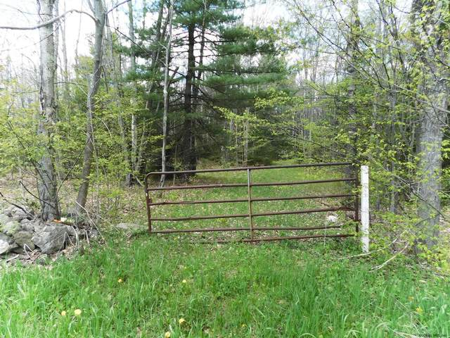 391 Stone Store Rd, Middleburgh, NY 12122 (MLS #202118670) :: 518Realty.com Inc