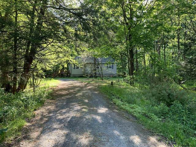 20 Greenfield Manor Rd, Porter Corners, NY 12859 (MLS #202118698) :: 518Realty.com Inc