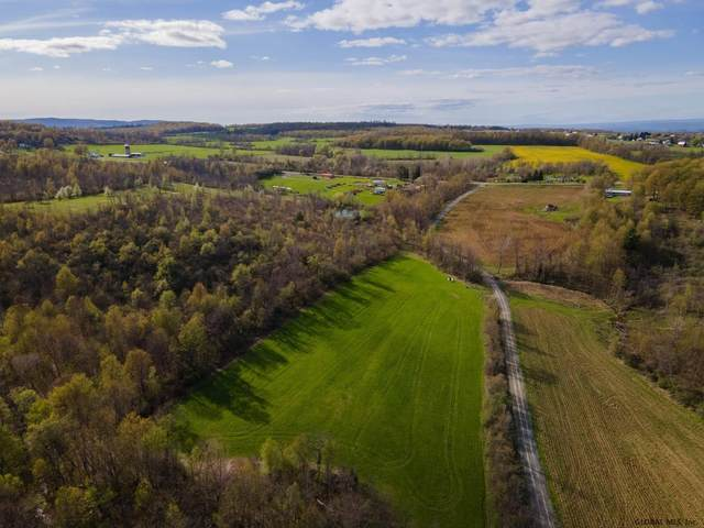 0 Slate Hill Rd, Sharon, NY 13459 (MLS #202118706) :: 518Realty.com Inc