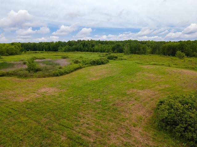 Brand Rd, Root, NY 12166 (MLS #202120814) :: Carrow Real Estate Services