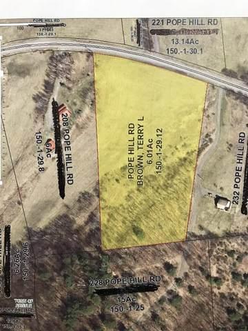 0 Pope Hill Rd, Argyle, NY 12809 (MLS #202121222) :: 518Realty.com Inc