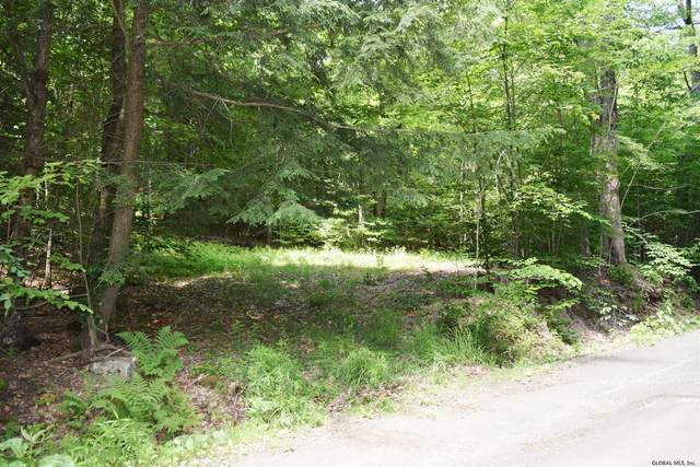 0 Red Pond Rd, Petersburgh, NY 12138 (MLS #202121412) :: Carrow Real Estate Services