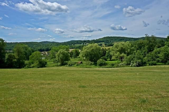 20 Valley View Ln, Salem, NY 12865 (MLS #202121454) :: 518Realty.com Inc