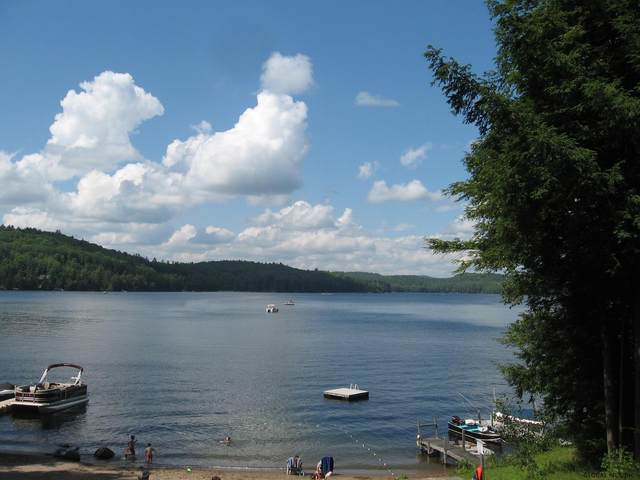 6 & 4 Pines Lakeside Dr, Chester, NY 12817 (MLS #202121499) :: 518Realty.com Inc