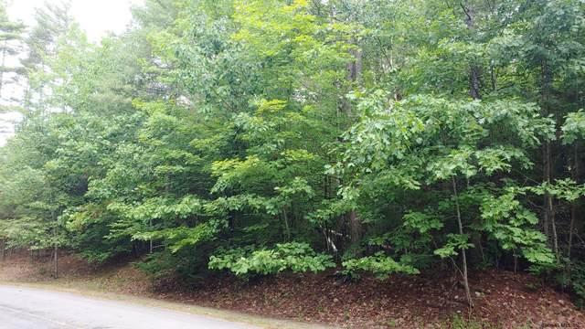 206 Mountain Path, North Creek, NY 12853 (MLS #202122003) :: Carrow Real Estate Services