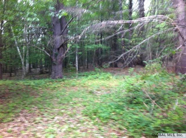 00 Route 20, East Durham, NY 12423 (MLS #202122790) :: 518Realty.com Inc