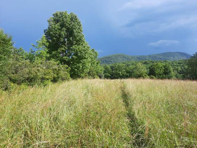 lot 4 Parker School Rd, Pittstown, NY 12094 (MLS #202123614) :: Carrow Real Estate Services