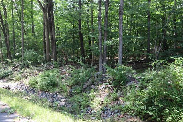 Wemple Rd, Stephentown, NY 12168 (MLS #202123701) :: Carrow Real Estate Services