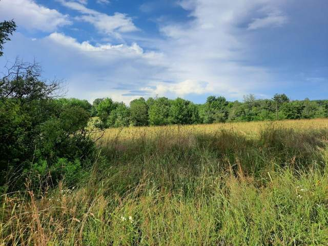 Lot 1 Parker School Rd, Pittstown, NY 12094 (MLS #202123845) :: Carrow Real Estate Services