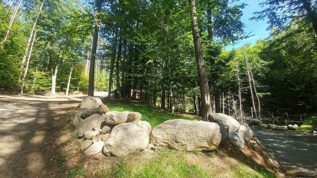 41 Gibbons Rd, Brant Lake, NY 12815 (MLS #202123880) :: Carrow Real Estate Services