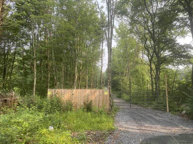 00 New York State Route 29, Galway, NY 12074 (MLS #202124068) :: Carrow Real Estate Services