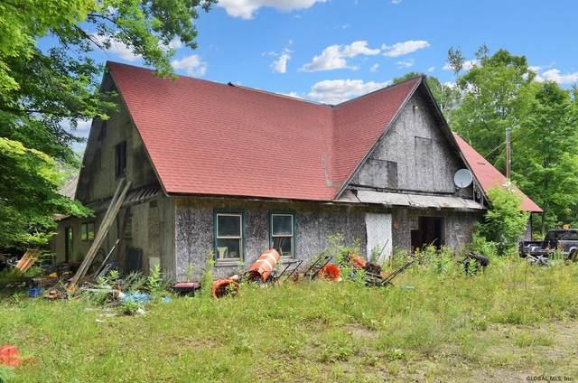 782 Zaltz Rd, Athol, NY 12810 (MLS #202124448) :: Carrow Real Estate Services