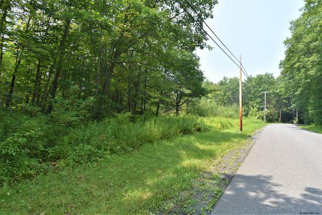 147A Lower Flat Rock Rd, Feura Bush, NY 12067 (MLS #202124679) :: Carrow Real Estate Services