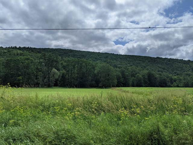 0 State Route 145, Preston Hollow, NY 12469 (MLS #202124928) :: Carrow Real Estate Services